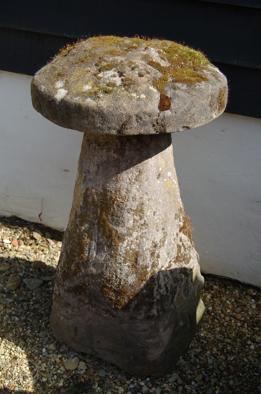 18th Century Staddle Stone beautifully weathered with moss and lichen. £375. Buy online or visit Debden Barns Antiques Saffron Walden, Essex.