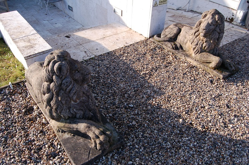 Pair of Large Recumbent Lions beautifully weathered with moss and lichen. £1,250. Buy online or visit Debden Barns Antiques, Saffon Walden, Essex.
